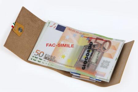 Money/Card Liscio Seta grigio pastello